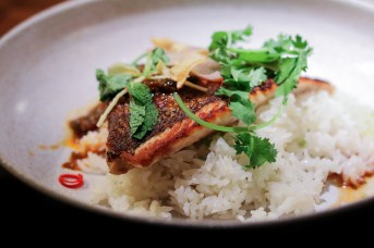 Market Fish Fillet - Cilantro, Chile Patis, Atchara, Garlic-Ginger Rice